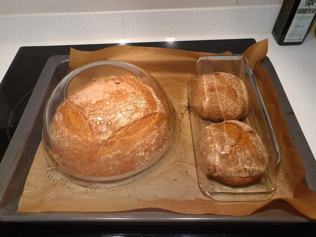 panes cocinados al horno con harina gallega natural de Trigo y Limpio