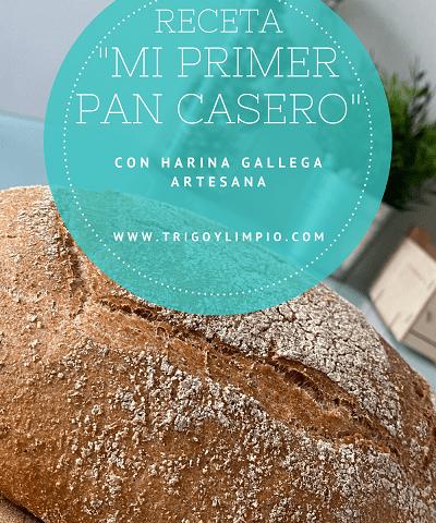 Pan gallego hecho con harina gallega artesana de Trigo y Limpio